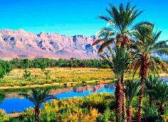 Долина реки Драа в Марокко