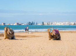 Пляж Эссаурия в Марокко