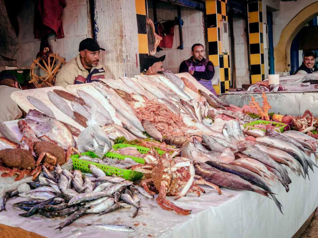 Морские деликатесы в рыбацкий порт в городе Эс-Сувейра