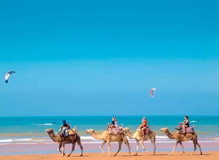 Прогулка на верблюдах по пляжу Эс-Сувейра